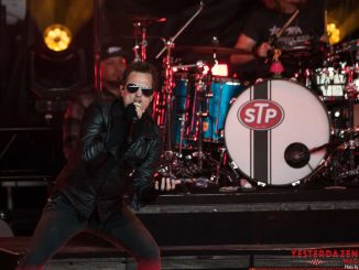 Stone Temple Pilots Pain In the Grass 2018